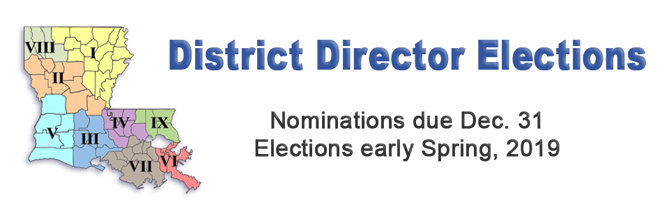District Director Election 1