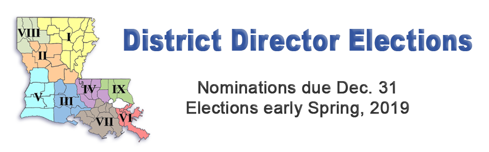 District Director Election A